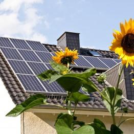 Мережева сонячна електростанція